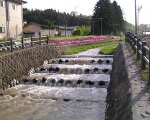 3) 深みや瀬のある水路